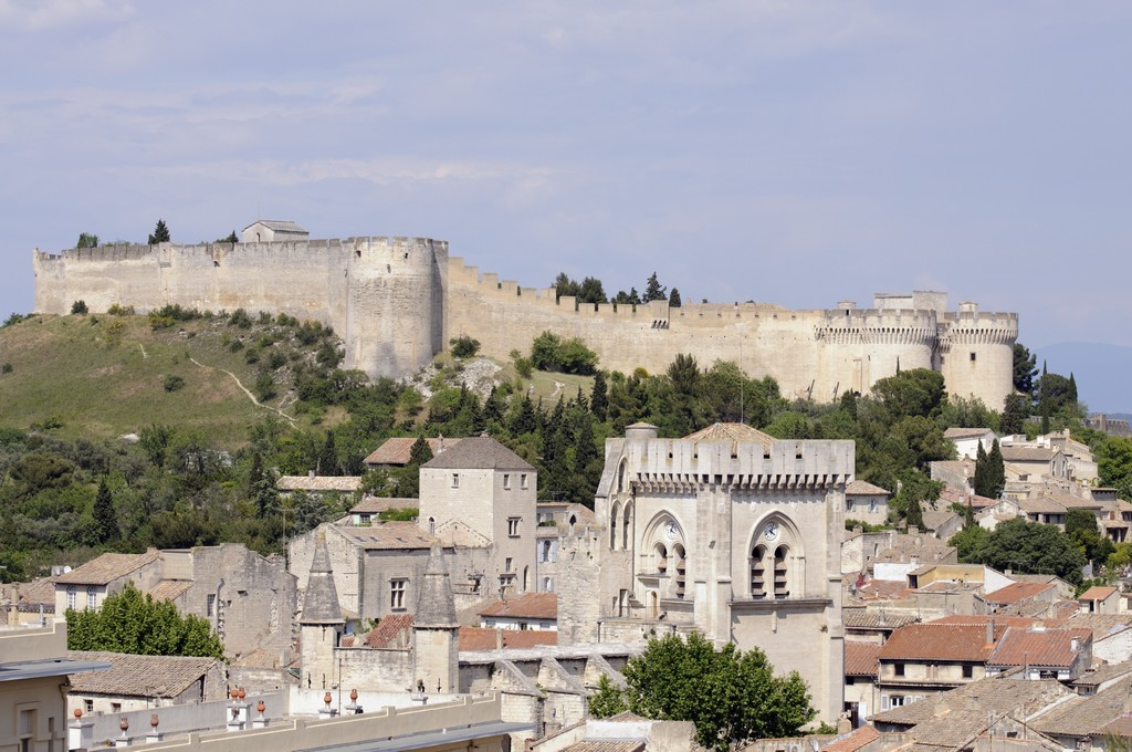 Tourisme Gard, fort Saint André, Villeneuve-lès-Avignon